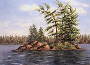 """Algonquin in August"""