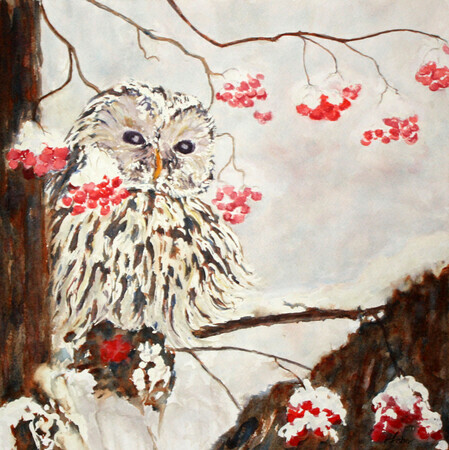 """Barred Owl with Winter Berries"""