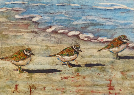 """Shore Birds: Three in a Row"""
