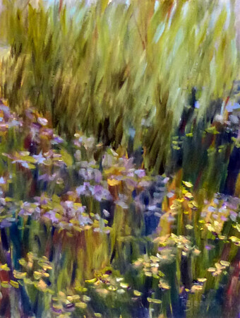 """Wild Grasses in Bloom"""